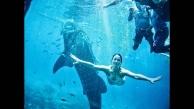 Плаваем с тигровой акулой