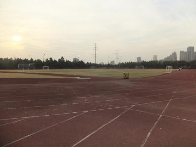 Спортивные поля на кампусе